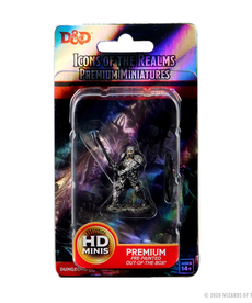 WizKids - WZK D&D: Painted Human Fighter (He/Him/They/Them)