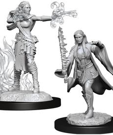 WizKids - WZK Female Multiclass Warlock & Sorcerer