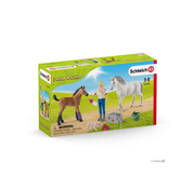 Schleich Schleich Vet Visiting Mare and Foal