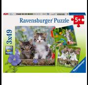 Ravensburger Ravensburger Cuddly Tiger Kittens Puzzle 3 x 49pcs