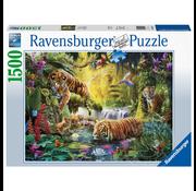 Ravensburger Ravensburger Tranquil Tigers Puzzle 1500pcs