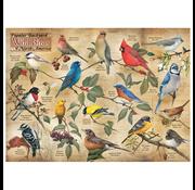 Cobble Hill Puzzles Cobble Hill Popular Backyard Wild Birds of North America Puzzle 1000pcs