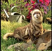 Folkmanis Folkmanis Ferret Puppet