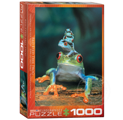 Eurographics Eurographics Red-Eyed Tree Frogs Puzzle 1000pcs