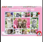 Schmidt Schmidt Kittens Puzzle 100pcs