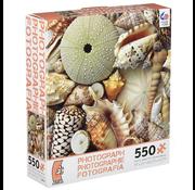 Ceaco Ceaco Photograph Shells Puzzle 550pcs