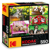 Kodak Puppies and Kittens Puzzle 550pcs