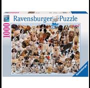 Ravensburger Ravensburger Dogs Galore! Puzzle 1000pcs