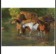 Cobble Hill Puzzles Cobble Hill Horse Pond Puzzle 500pcs