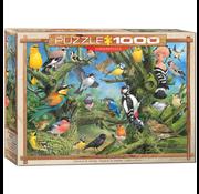 Eurographics Eurographics Garden Birds Puzzle 1000pcs