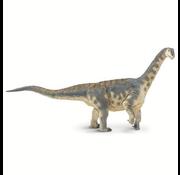 Safari Safari Camarasaurus