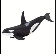 Safari Safari Orca