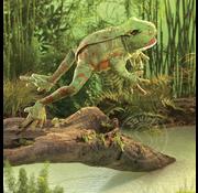 Folkmanis Folkmanis Jumping Frog Puppet