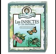 Professor Noggin's Professeure Caboche les Insectes et les Araignées