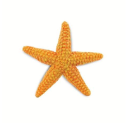 Safari Safari Orange Starfish