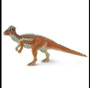 Safari Safari Pachycephalosaurus