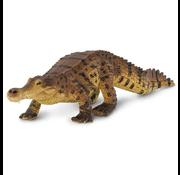 Safari Safari Sarcosuchus
