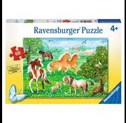 Ravensburger Ravensburger Mustang Meadow Puzzle 60pcs _