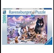 Ravensburger Ravensburger Winter Wolves Puzzle 2000pcs