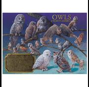 Cobble Hill Puzzles Cobble Hill Owls of North America Puzzle 1000pcs