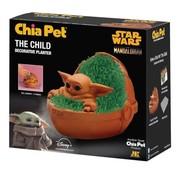 Chia Pet Star Wars the Child
