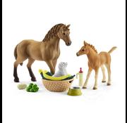 Schleich Schleich Horse Club Sarah's Baby Animal Care with Quarter Horse