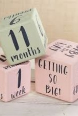 Mud Pie Girl Milestone Blocks
