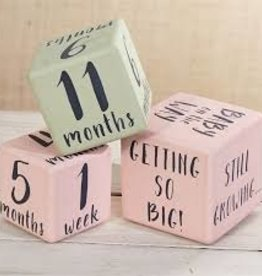 Mud Pie Milestone Blocks - Pink
