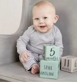 Mud Pie Milestone Blocks - Blue