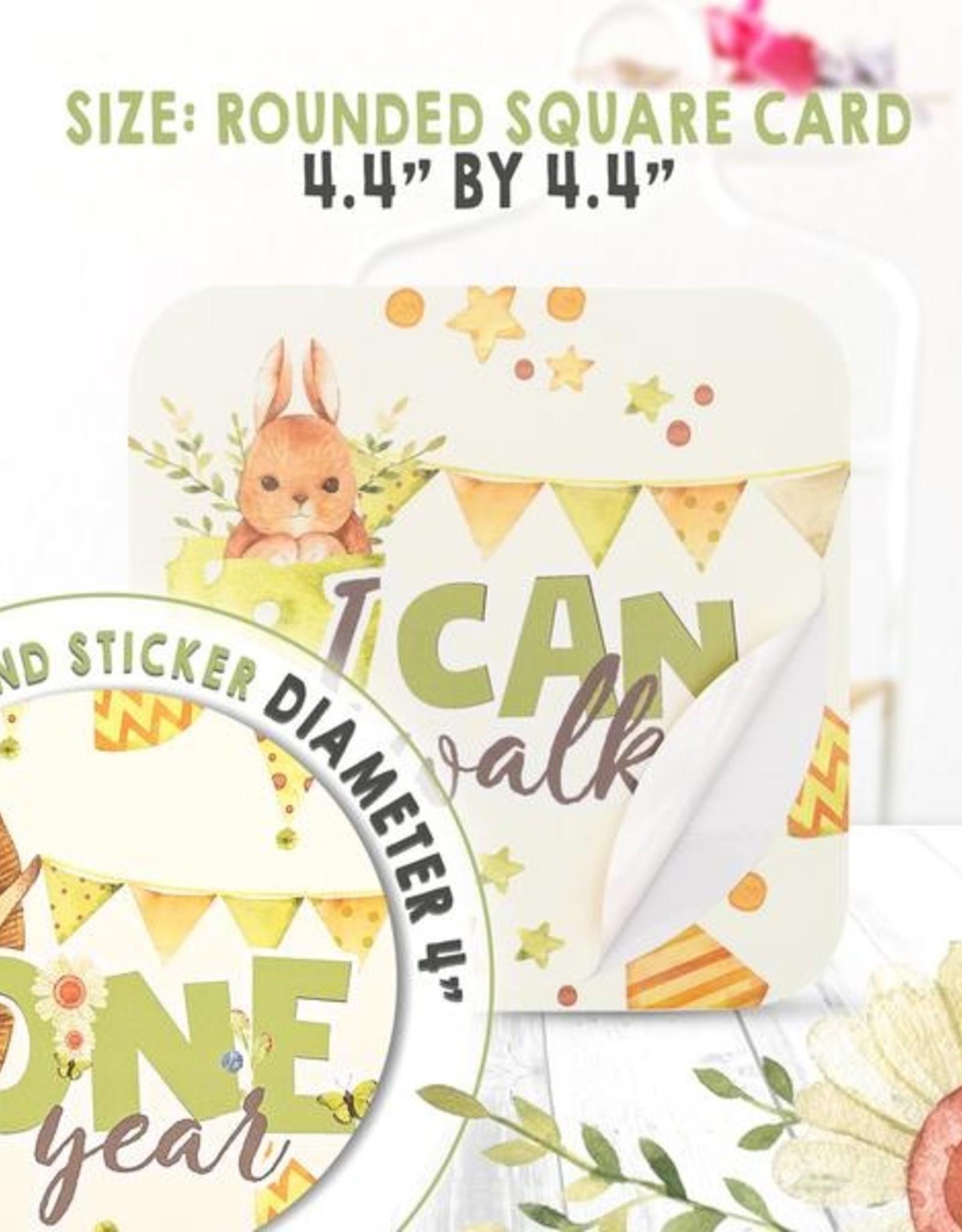 Baby Milestone Stickers (24)