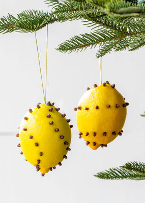 Cloved Lemon Ornament