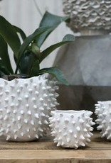 White Cacti Spike Pot Medium