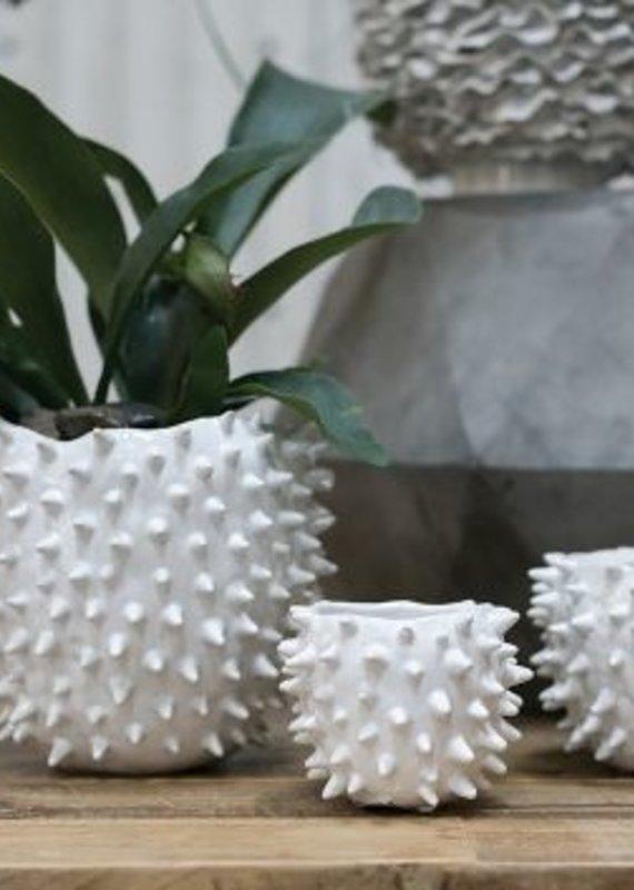 White Cacti Spike Pot | Medium