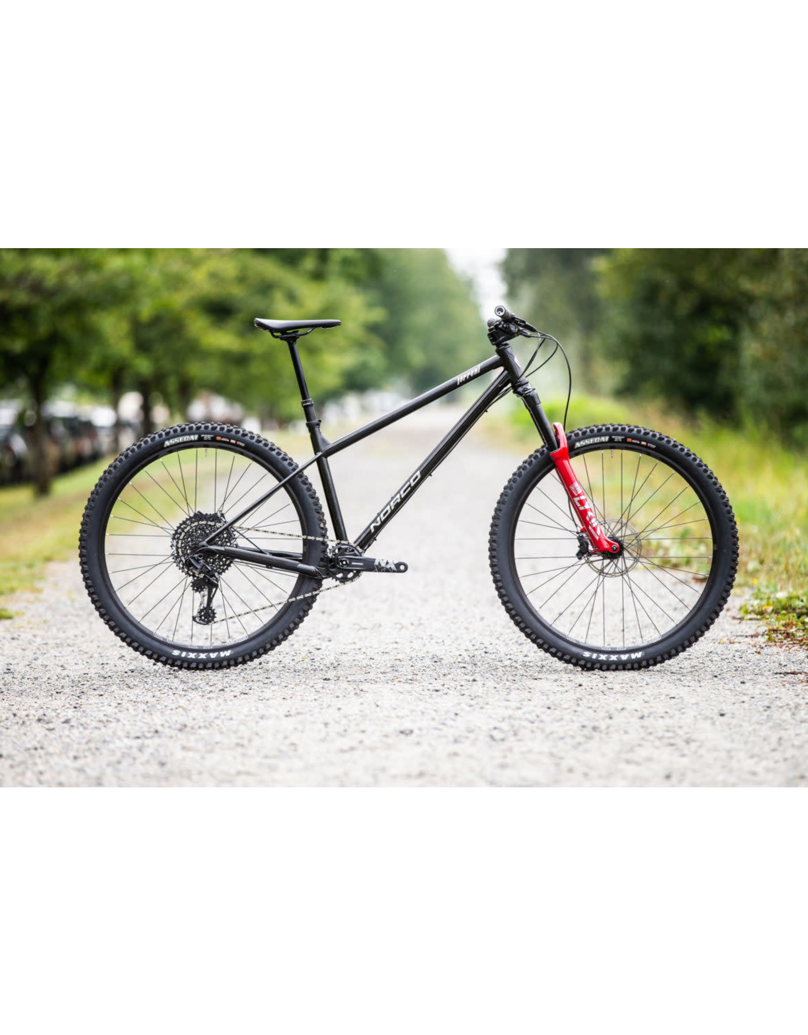NORCO Bikes Rental Torrent HT S1 Small 29 Black/Chrome