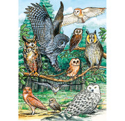 Cobble Hill Puzzles Cobble Hill North American Owls Tray Puzzle 35pcs
