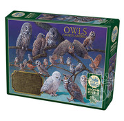Cobble Hill Puzzles Cobble Hill Owls of North America Puzzle 1000pcs
