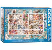 Eurographics Eurographics Seashell Collection Puzzle 1000pcs