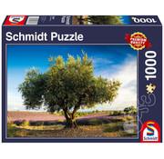 Schmidt Schmidt Olive Tree in Provence Puzzle 1000pcs