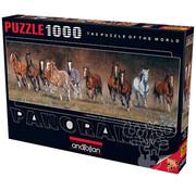 Anatolian Anatolian Free Time Panoramic Puzzle 1000pcs