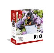 Trefl/Pierre Belvedere Trefl Nice Puppy Puzzle 1000pcs