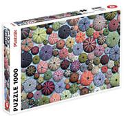 Piatnik Piatnik Sea Urchins Puzzle 1000pcs