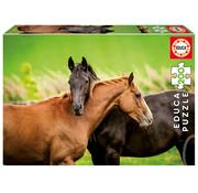 Educa Borras Educa Horses Puzzle 200pcs