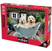 Anatolian Anatolian Puppies in a Wheelbarrow Puzzle 260pcs