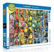 New York Puzzle Company New York Puzzle Co. Rainbow of Birds Puzzle 1000pcs