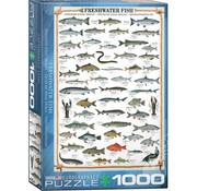 Eurographics Eurographics Freshwater Fish Puzzle 1000pcs