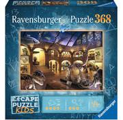 Ravensburger Ravensburger Museum Mysteries Escape Puzzle Kids 368pcs