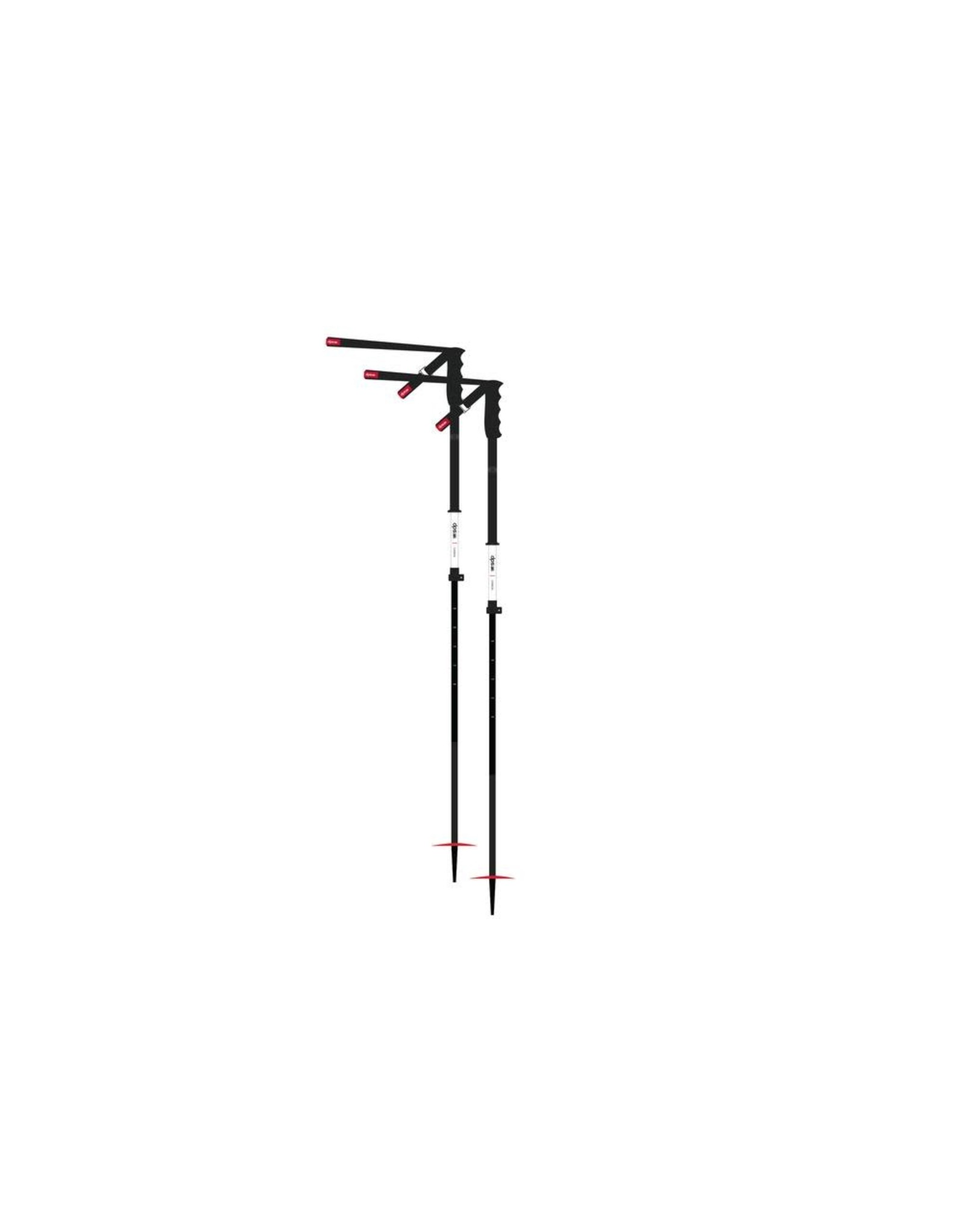DPS DPS Extendable Pole