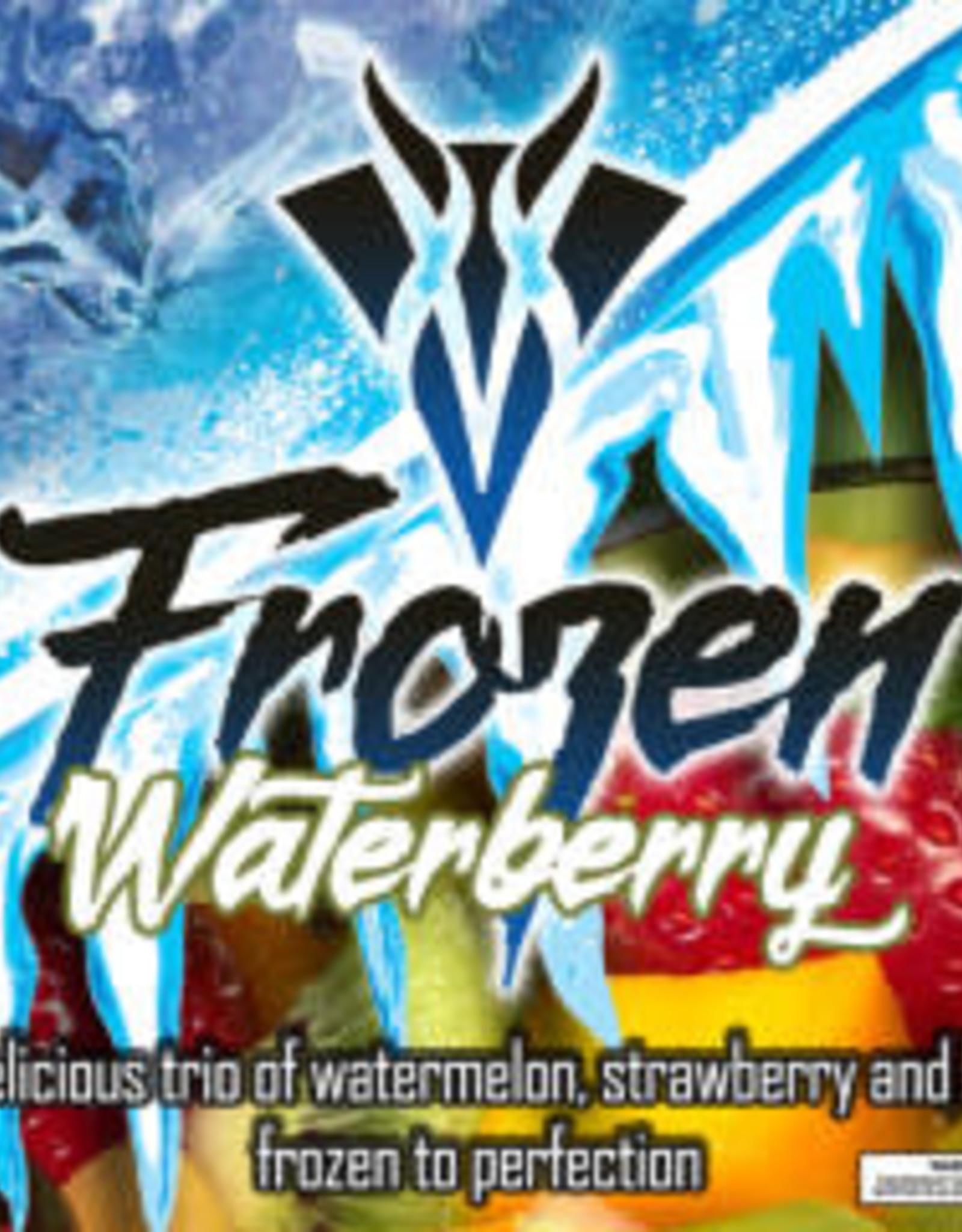 VANGO Frozen Waterberry - Salt Nic