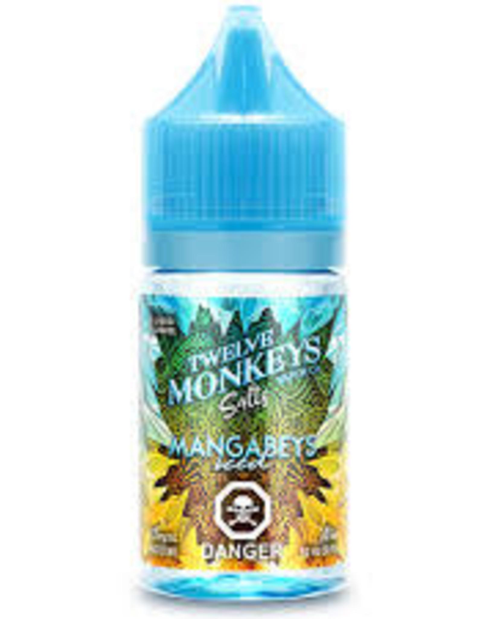 Twelve Monkeys Twelve Monkeys Ice Age Salt