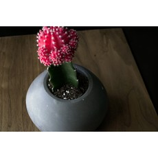 Large Round Planter Charcoal
